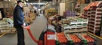 W cenach nowalijek wiosny wciąż nie widać. Ceny polskich warzyw wciąż wysokie
